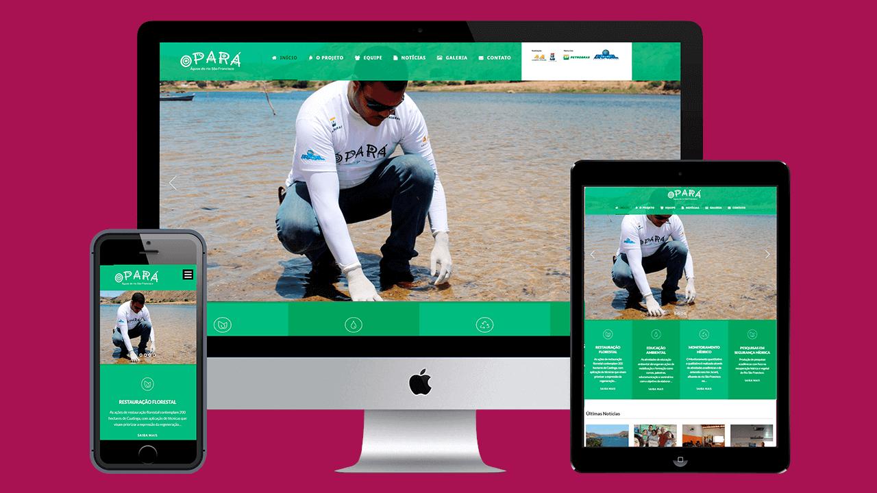 Criação do site do projeto Opará
