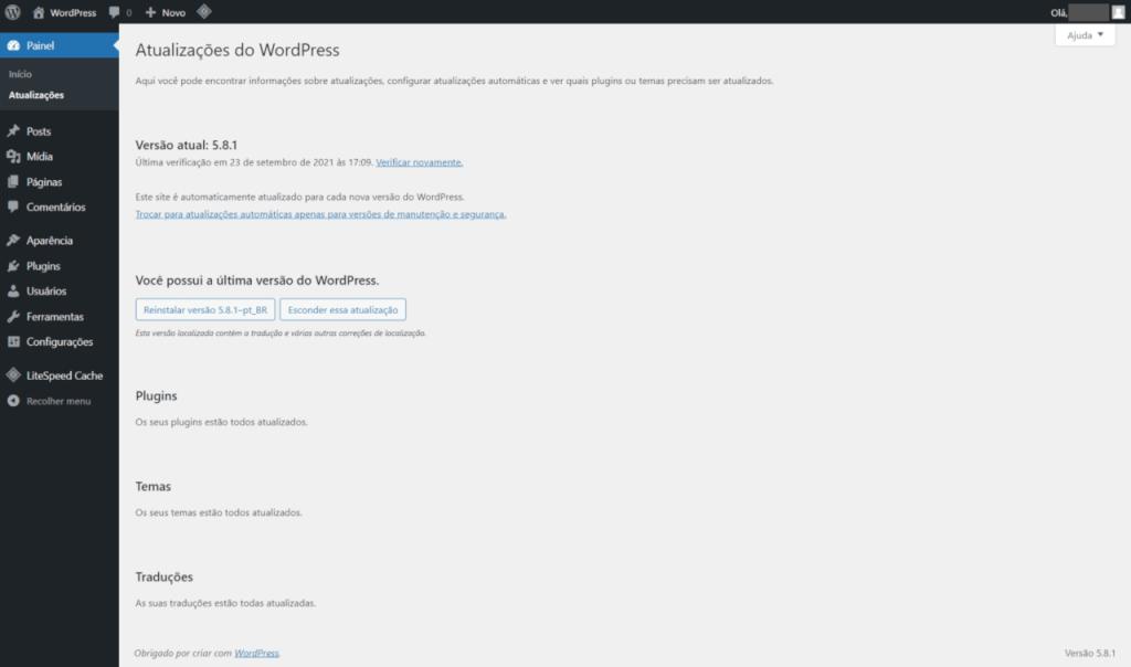 Conhecendo o wordpress - Tela que exibe as opções disponíveis de atualização dos componentes do site